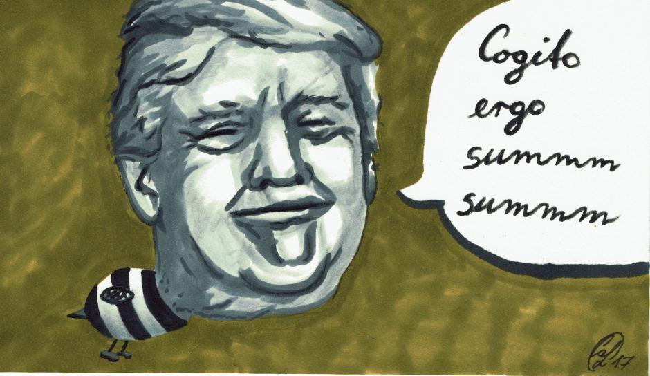 Trump-Mail-Art-Wettbewerb_000001